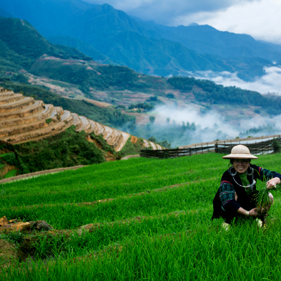 The  Hmong's Panorama - Sapa 2 Days